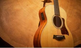 Cinco guitarras Taylor excelentes para estudiantes